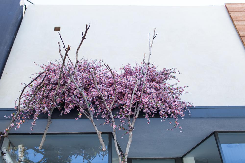 Blooming tree by Naomi Yamada