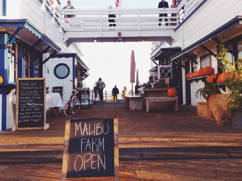 Malibu Farm sign by Naomi Yamada
