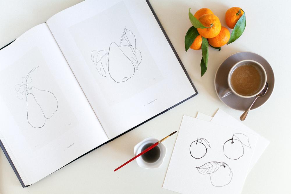 Sketching satsumas by Naomi yamada