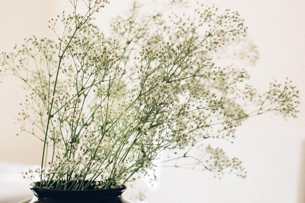 Flowers in studio corner