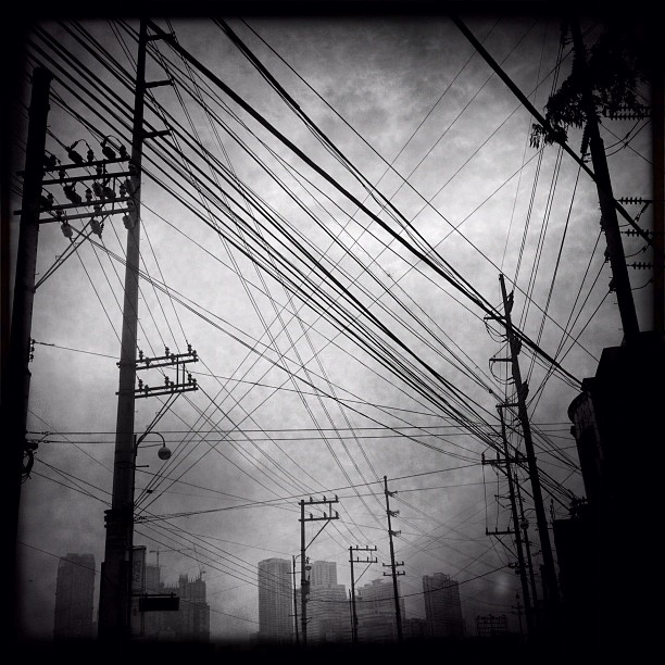 Another morning in the jungle (Taken with Instagram at Rockwell-Mandaluyong Bridge)
