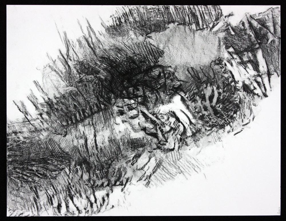 """SCAPE Print 9  19.5"""" x 25.5""""  Graphite on Canson Dessin Paper"""