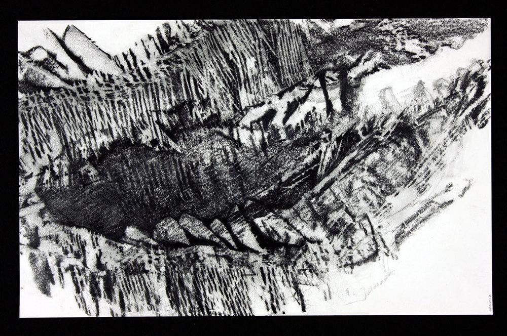 """SCAPE Print 28  12"""" x 24""""  Graphite on Strathmore paper"""