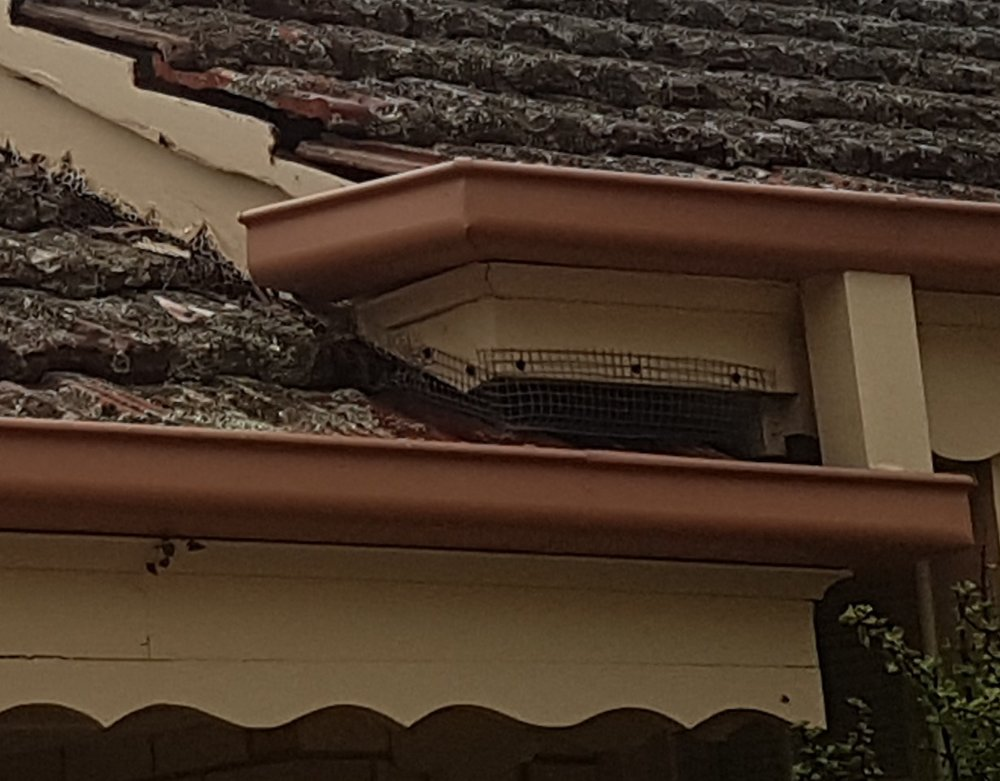 Secure roof of Possums