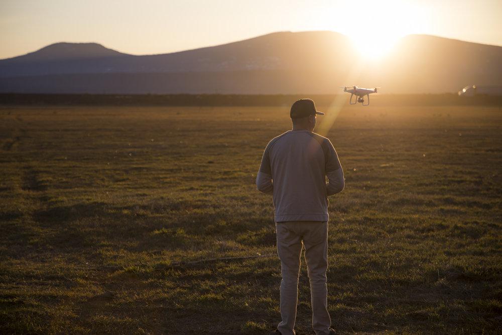 DroneShadyPine-1.jpg