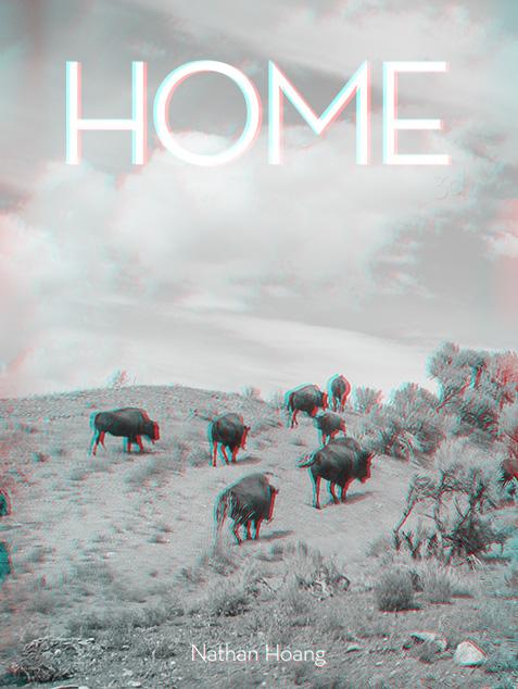 Home 3D(2013)
