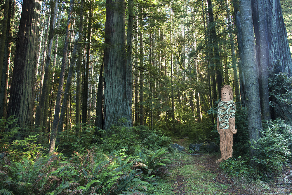 Bigfoot in the Redwoods, 2014. Mixed media