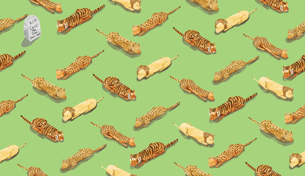 big-cats_pattern_1000x579_v2.0.png