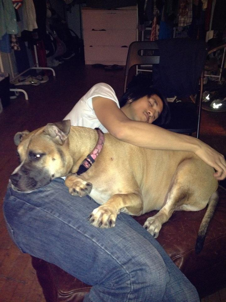 In our first NYC apartment in DUMBO, this is the first time Ego and I cuddled, on what came to be her safe ottoman.