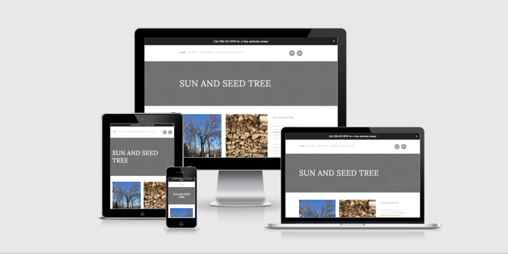 Sun and Seed Tree Website