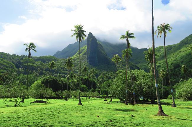 Massive-cliff-Raiatea-Island-French-Polynesia.jpg