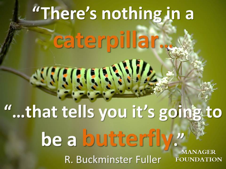 R Buckminster There's nothing in a caterpillar quote CD.jpg