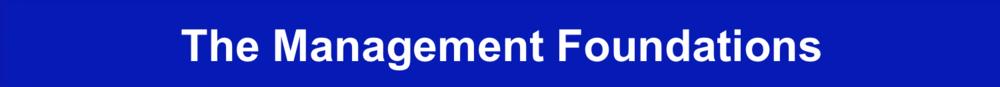 The Management Foundations - Fundamental Manager Skills Jpeg