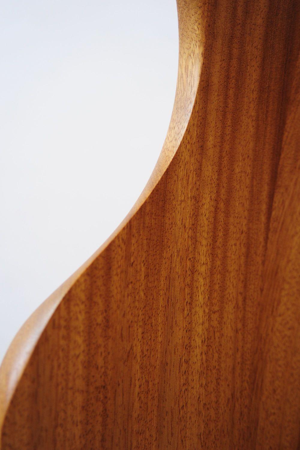 Curve Detail Back(3403).jpg