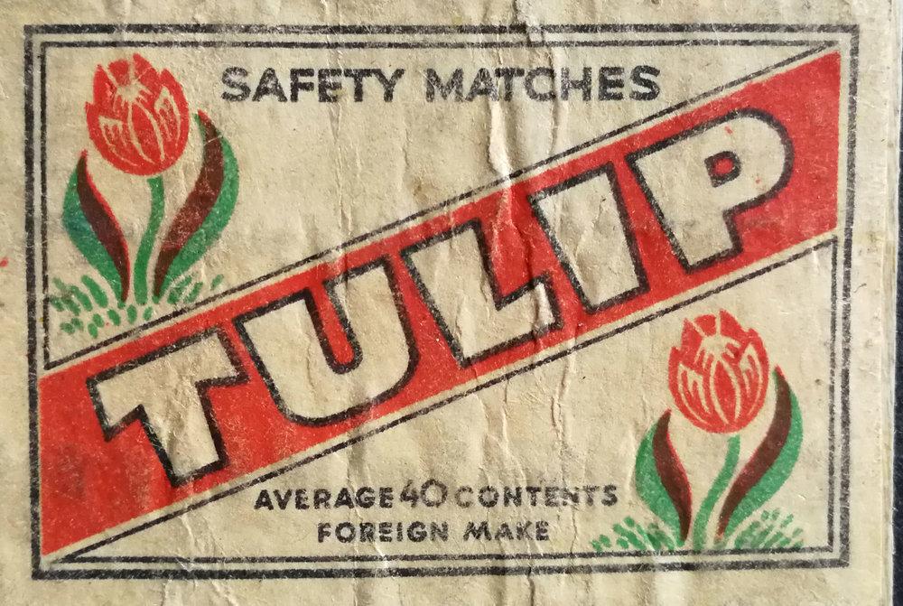 matchbox-tulip.jpg