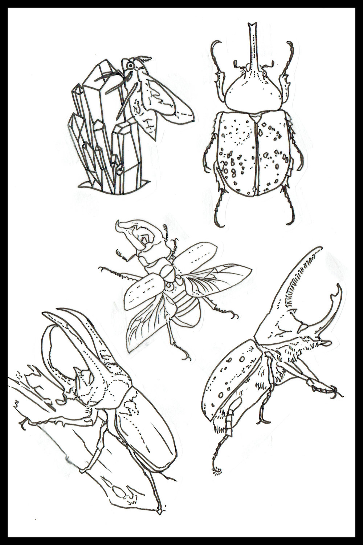 021 - Bugs.jpg
