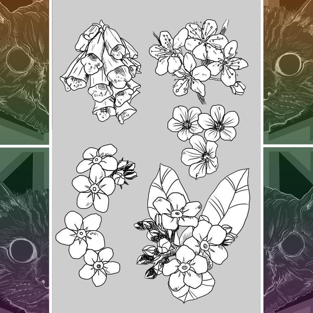 Flowers 002.jpg