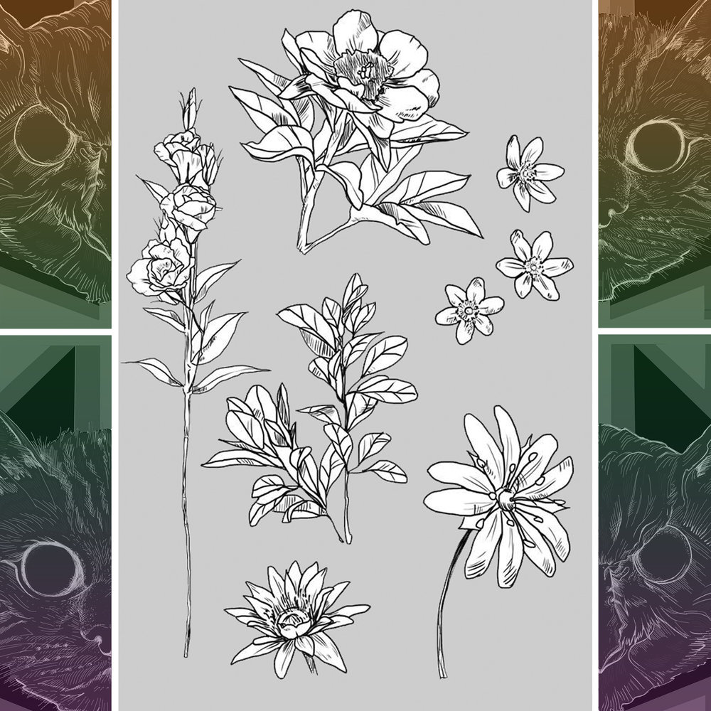Flowers 004.jpg