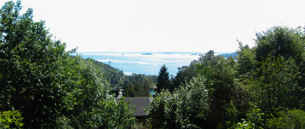 The Oslo fjord, as seen from the main cabin