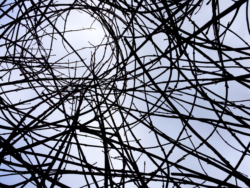 The branches were simply woven into one another, without any particular plan or pattern