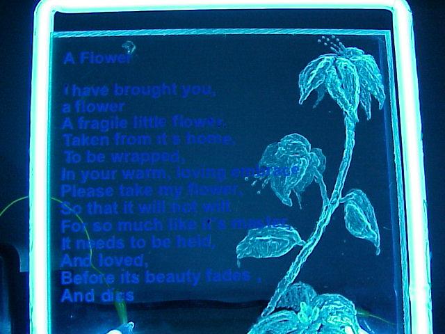 neonflower.jpg
