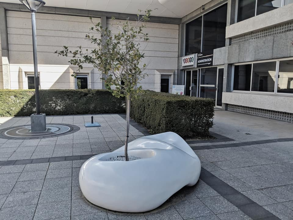 Public Bench    When Time Stood Still      Fiberglass, Tree (Melville Civic Center, WA, Australia) 2015