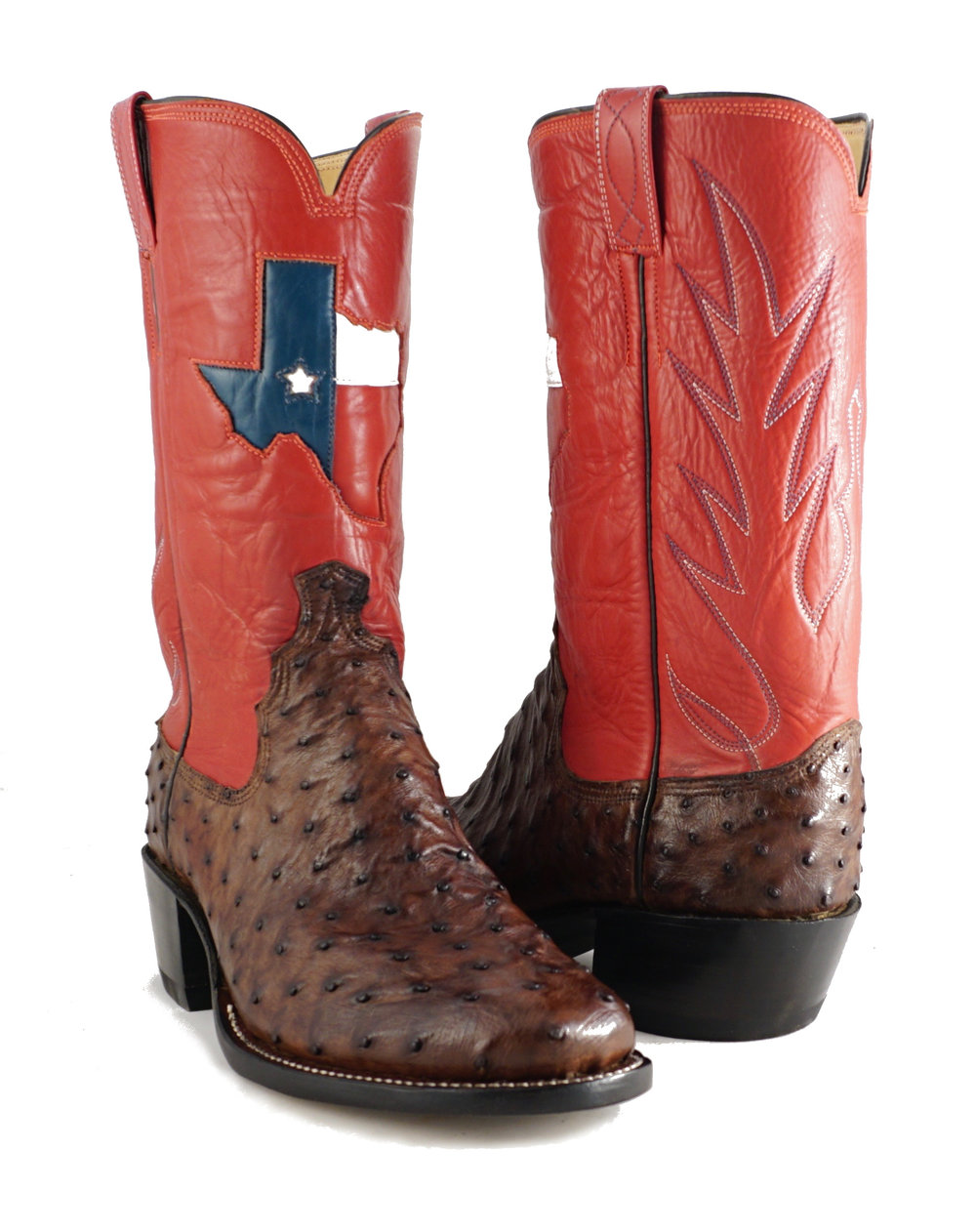 ostrich with texas flag inlay