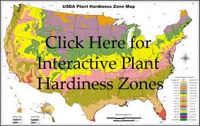 Plant Hardiness Zones with Click Here.jpg