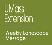 umass-landscapegr.jpg