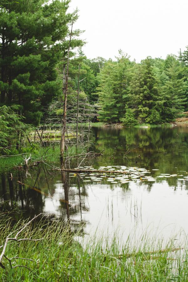 Pakenham-Ontario-Photography_4762.JPG
