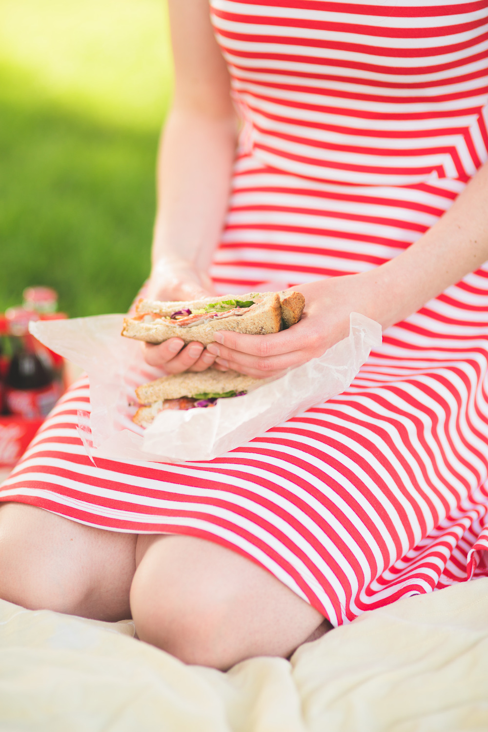 Picnic-Sandwhich-Engagement-Session