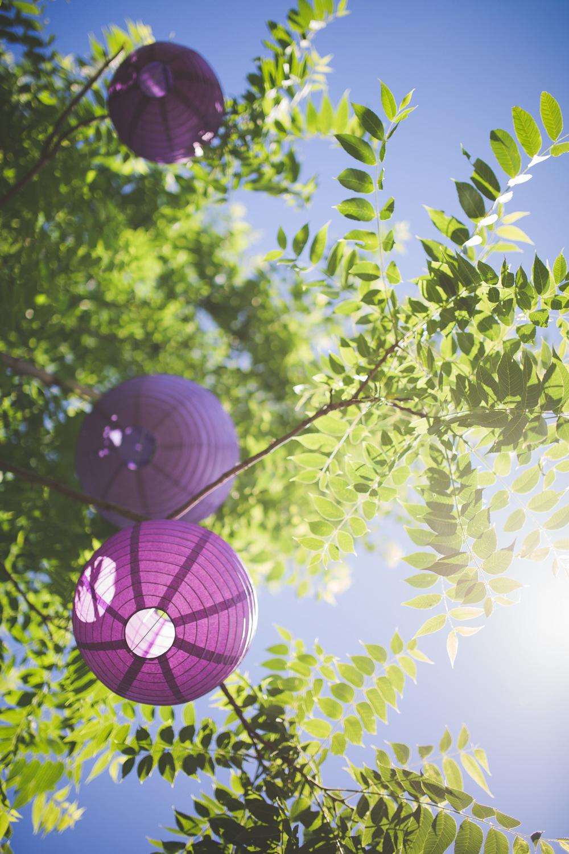 Purple-Paper-Lantern