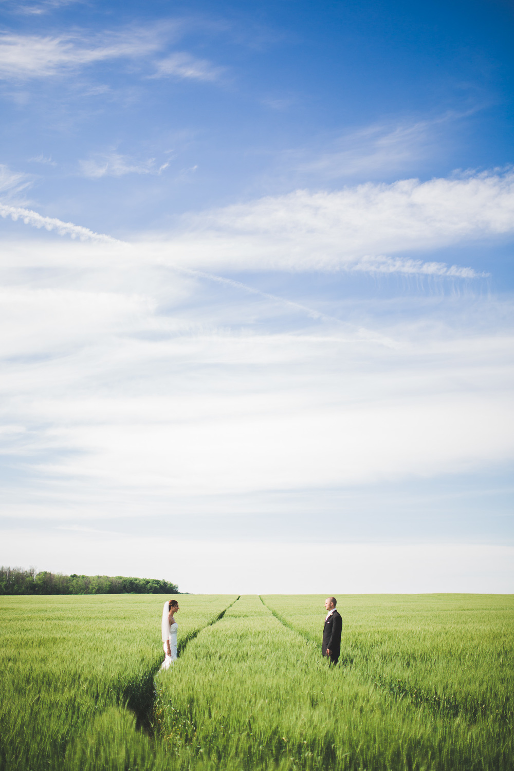 Ontario-Field-Wedding-Portrait