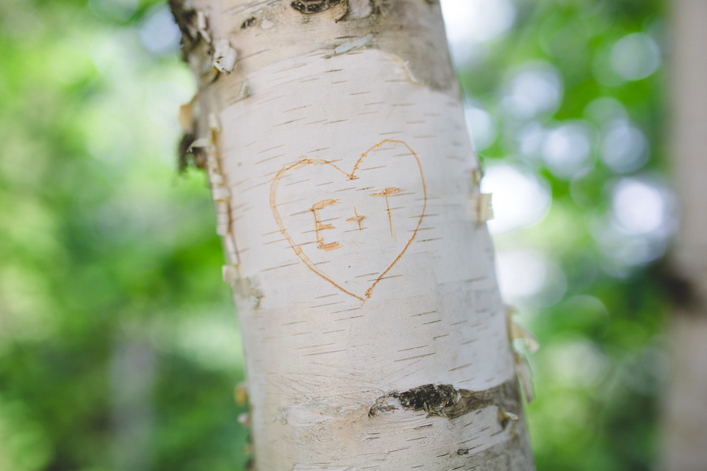 Birch-tree-name-carving