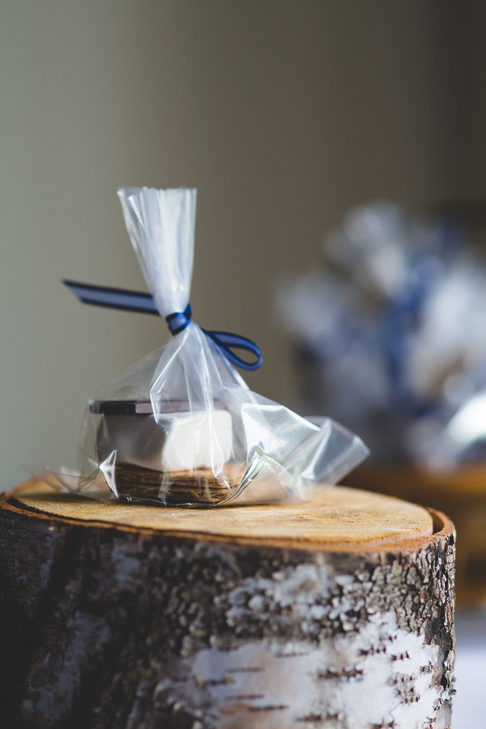 Smores-Wedding-Treats
