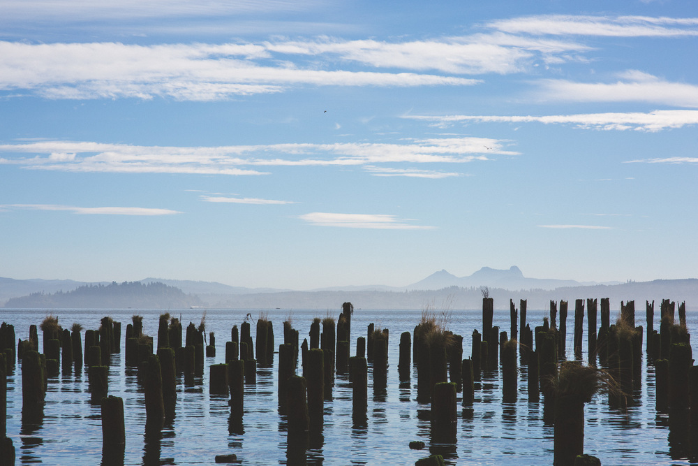 Old-pier-posts