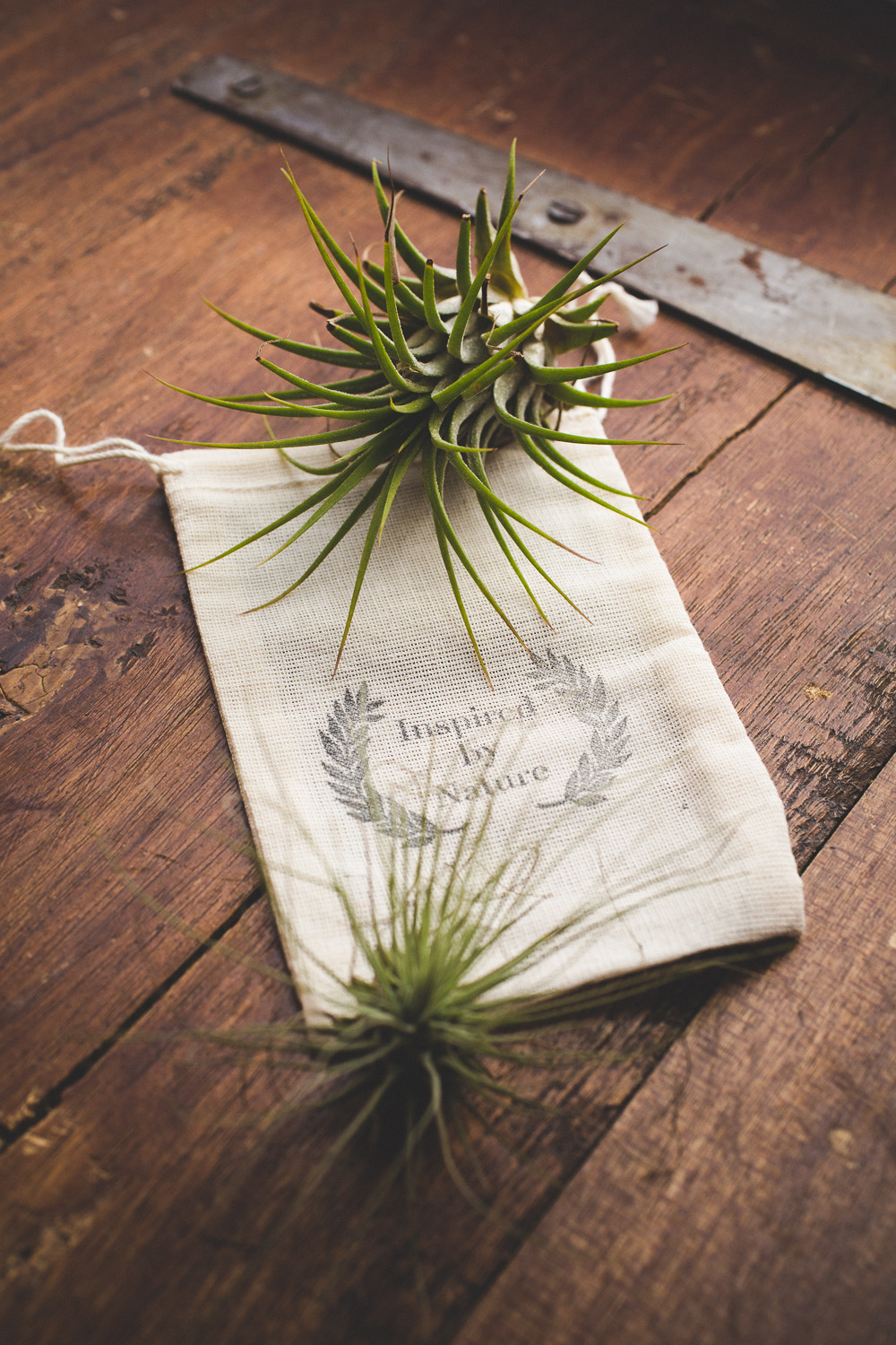 Airplant-swag-bag-wedding-favour