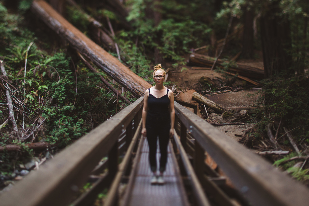 Muir-woods-portrait-tilt-shift
