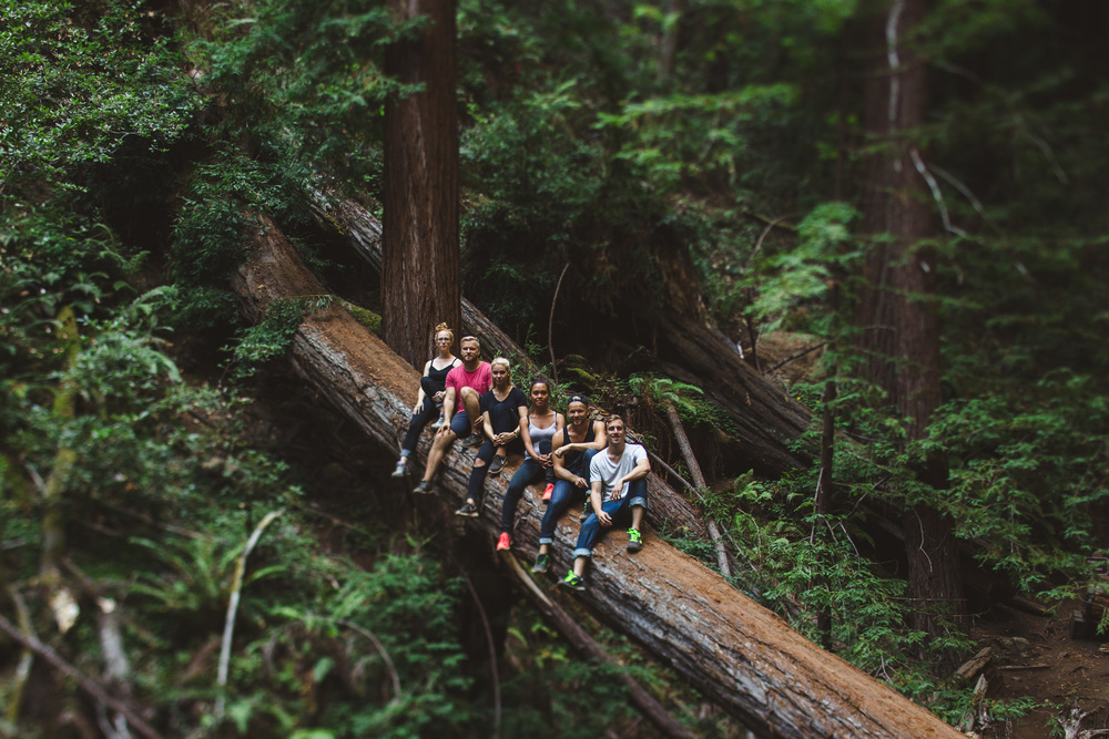 Muir-woods-people-sitting-on-log
