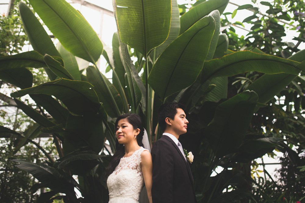 Etobicoke-Mississauga-Centennial-Park-Conservatory-Wedding