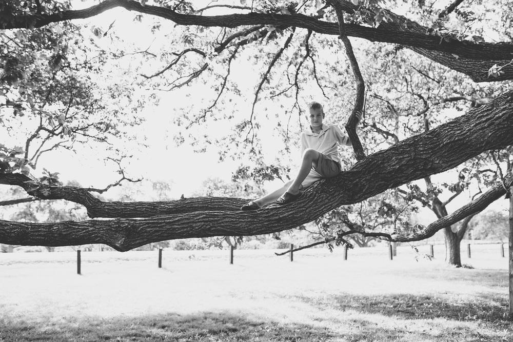 Ottawa-Arboretum-Climbing Tree