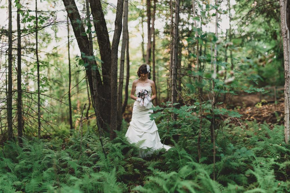 Brides portraits in ferns
