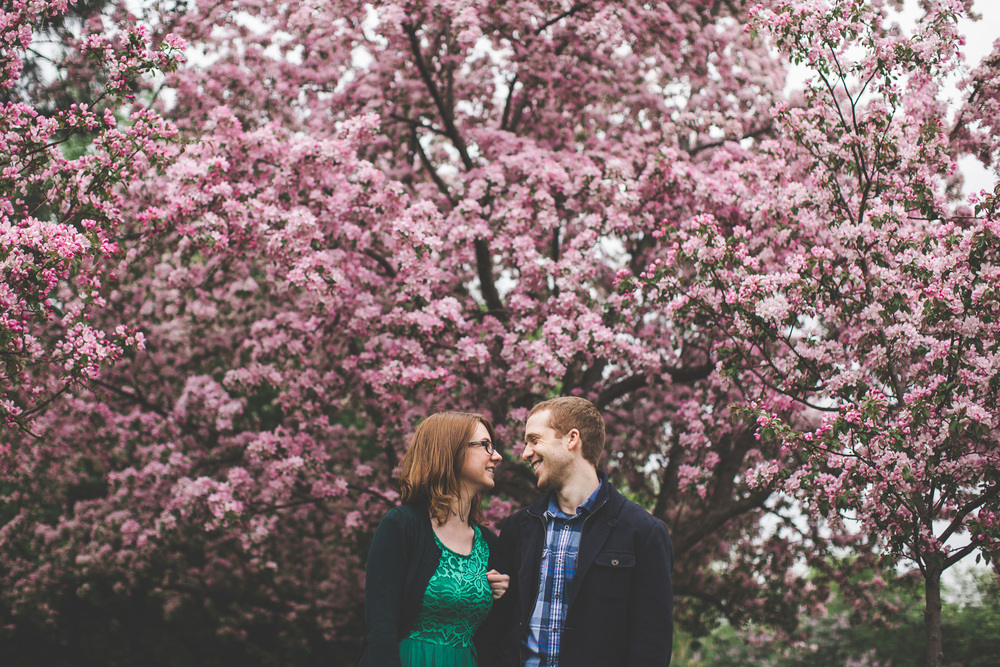 spring blossoms engagement photo