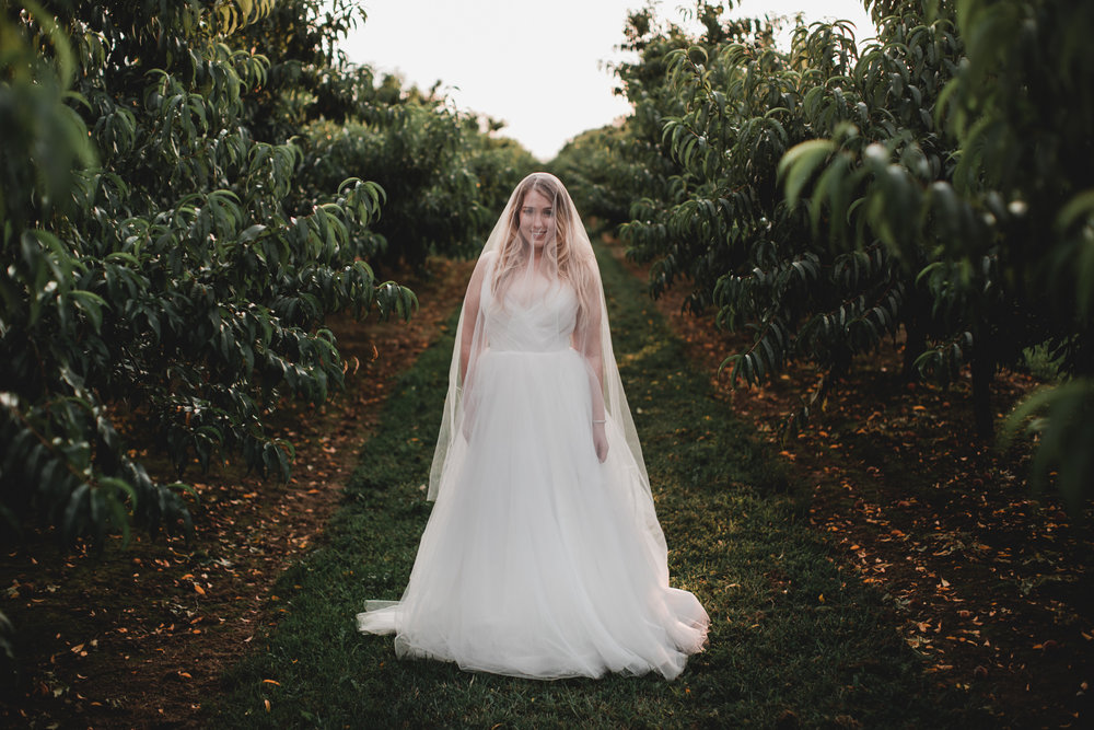 Bridal Portraits in Orchard