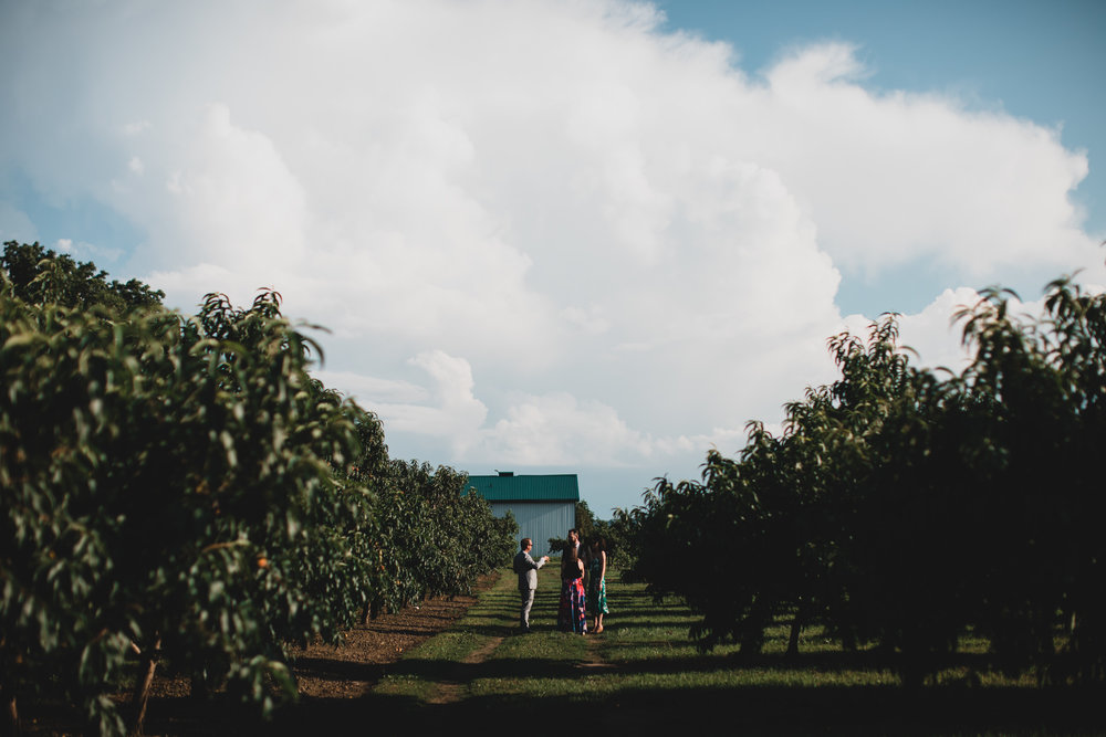 Backyard Orchard Wedding, Niagara on the Lake
