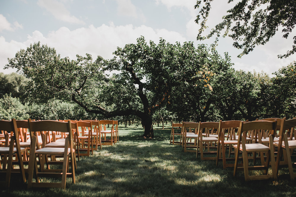Ceremony Location Ideas, Outdoor Orchard