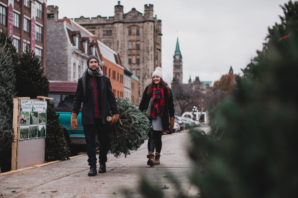 Couple buying a christmas tree parliament