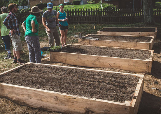 raised beds smaller.jpg