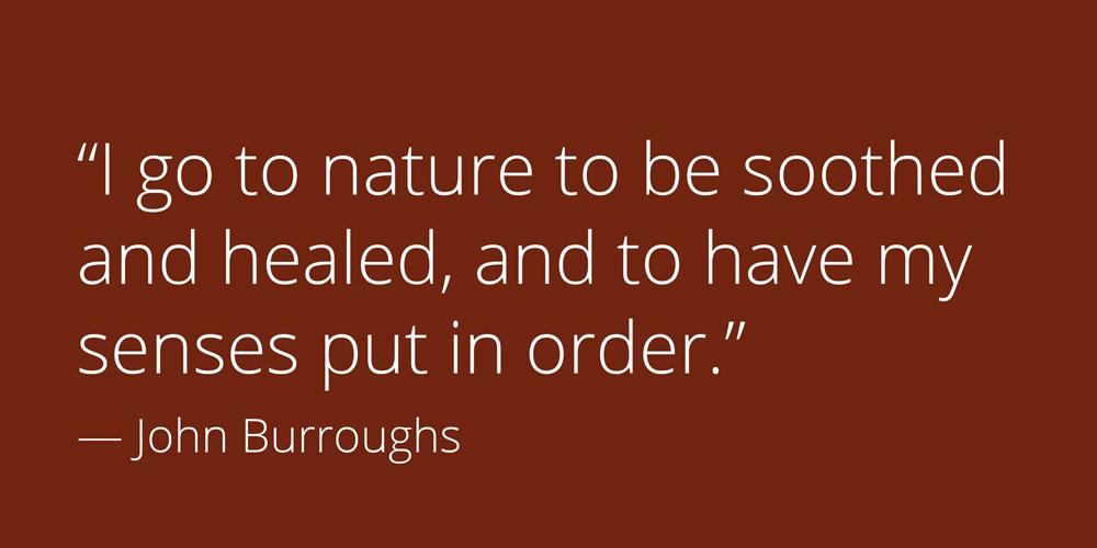burroughs-quote.jpg