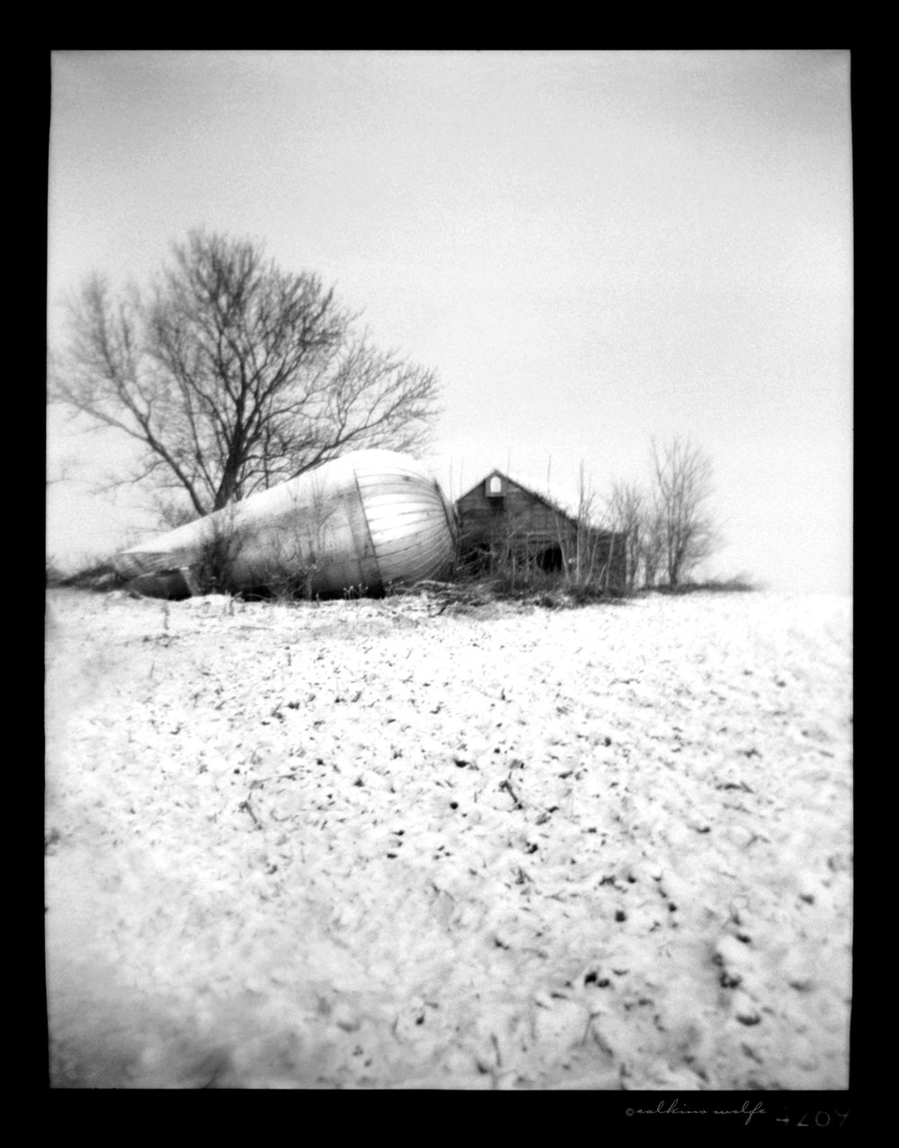 Fallen     Alternative Cameras: Pinhole to Plastic     Group Exhibition,  PhotoPlace Gallery  Middlebury, Vermont - December 2015 / January 2016. One of 35 images selected by juror and award winning fine art and commercial photographer,  Susan Burnstine .
